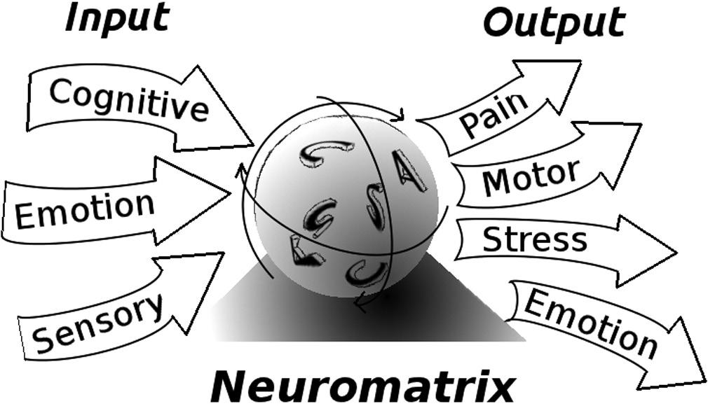 Pazienti con dolore cronico? Sensibilizzazione centrale del dolore