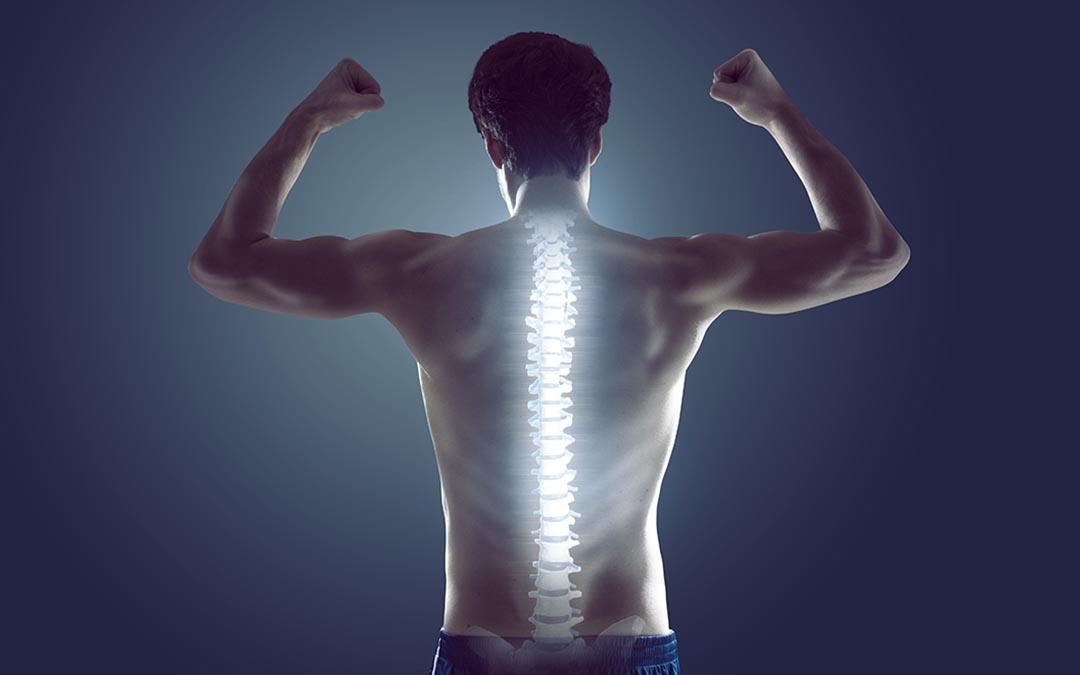Come diminuire il dolore alla schiena? Tirando su grandi pesi!