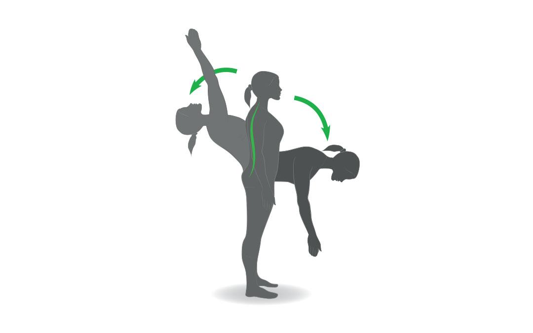 La flessione spinale è importante per la salute e la forza della schiena?